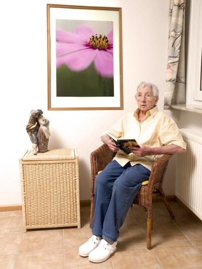 blumenbilder gerahmte kunstdrucke und leinwandbilder mit cosmea bl ten. Black Bedroom Furniture Sets. Home Design Ideas